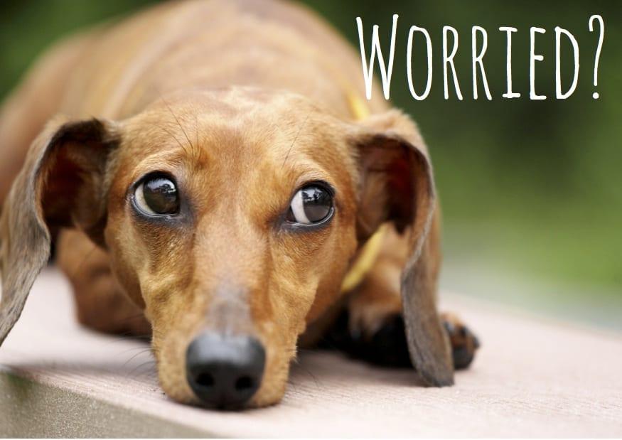 Worried-