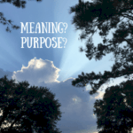 Meaning vs. Purpose…